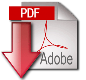 pdf-icon-300x277