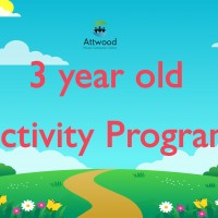 3 Year Old Activity Group